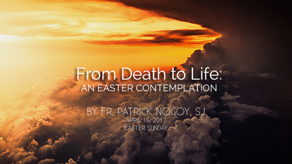 From Death to Life: An Easter Contemplation (Easter Sunday)